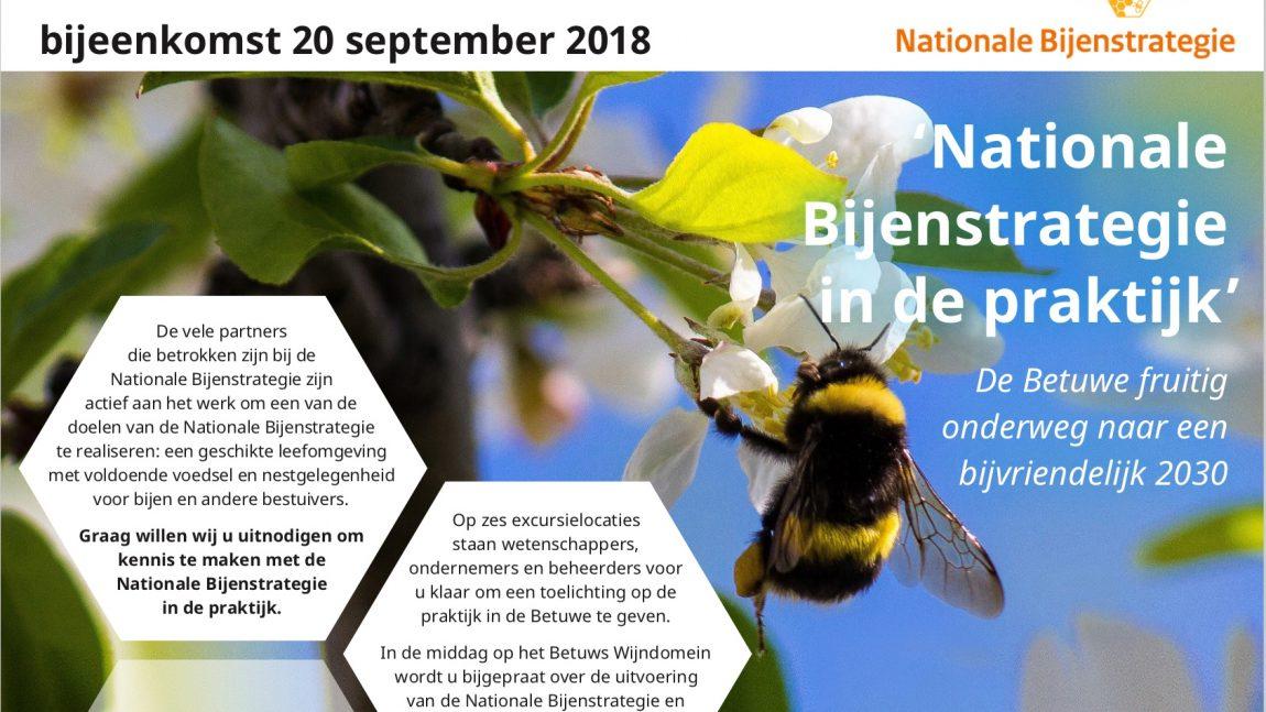 Bijeenkomst Nationale Bijenstrategie in de Betuwe!